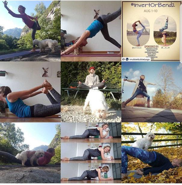 Meine Best Nine auf Instagram, wo ich mich seit Juli diesen Jahres tummele. Erstaunlich: Es sind allesamt Beiträge für Yoga-Instagram-Challenges...