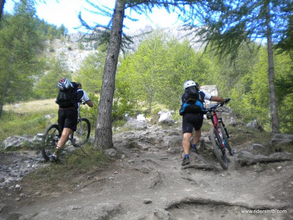 Dal Camping di Saretto, dove vi sono le sorgenti del Maira, ci arrampichiamo - imprecando!!- per circa 300 metri sino ad imboccare la strada militare che ci condurrà sino al Passo della Cavalla
