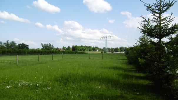 12000 qm Weide mit Nebengebäuden