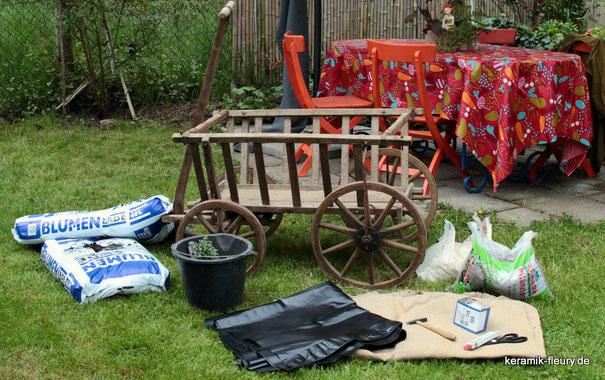 Miniatutgarten DIY