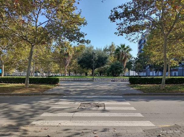 Vandalismo Arbitrario y antisocial en zonas verdes de la ciudad de Valencia contra la propiedad publica