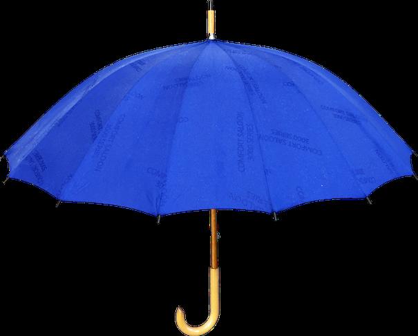 浮絵傘 男性向け/大人向け