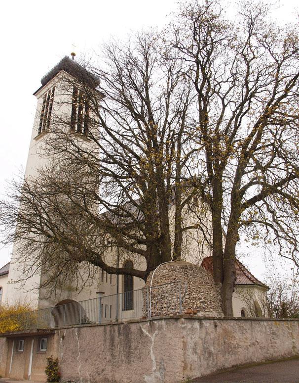 Wallfahrtskirche mit Grotte und altem Baumbestand. (2 Rosskastanien)