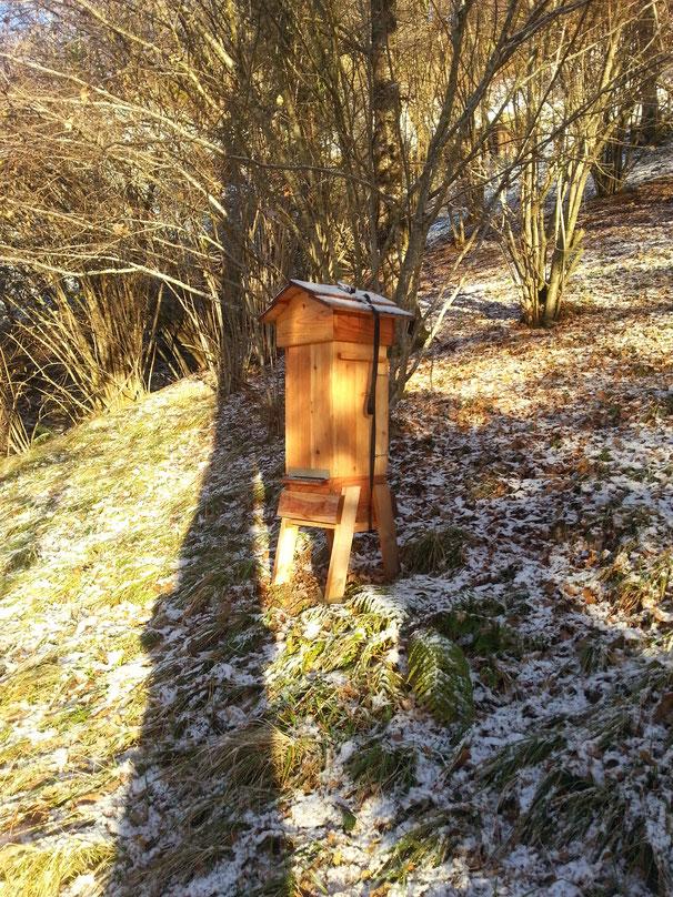 ruche prête pour l'hivernage