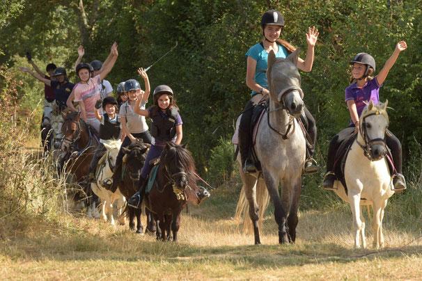 Stages d'équitation été 2017 dans l'Yonne, à proximité d'Auxerre