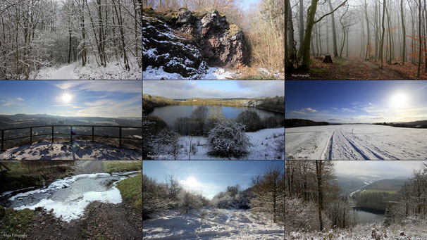 - Meine Naturfotografien -