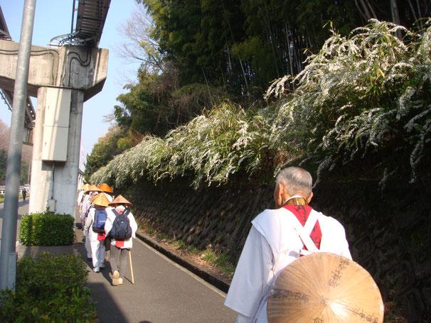 大阪モノレールと雪柳