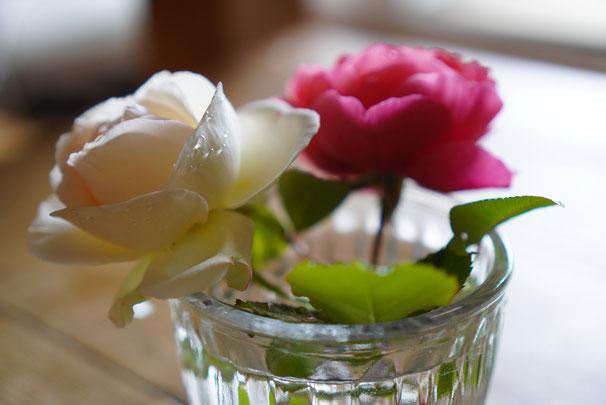 陶芸家 ブログ 焼き物 陶芸作品 茨城県笠間市 バラ バラの花 ガラスの花器 ガラスポット