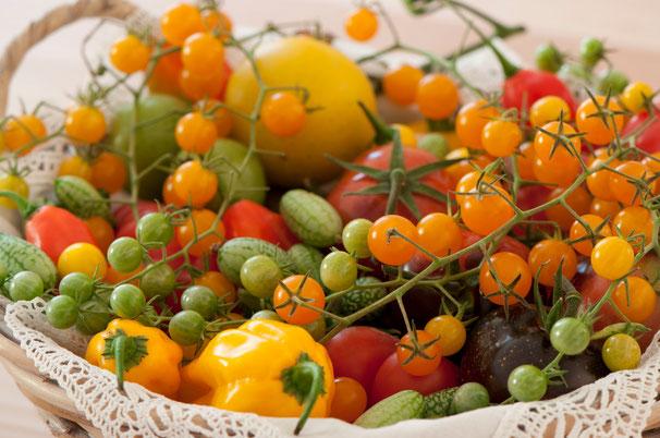 Sortenvielfalt an Gemüsen