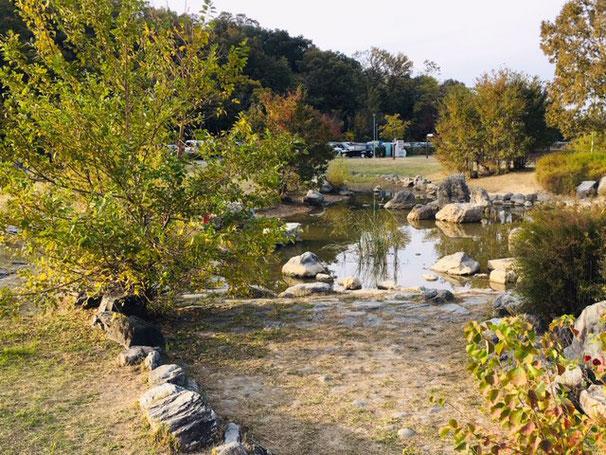 天白公園_プール・水遊び