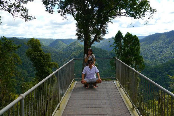Mamu Canopy Walk にいってきて熱帯雨林の中を歩いて。