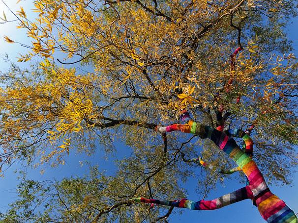 der be.strickte Baum