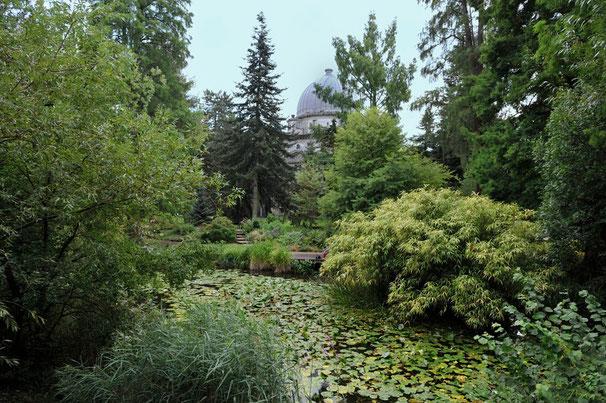 Jardin botanique de l'Université de Strasbourg          (Photo Alain Tessier)
