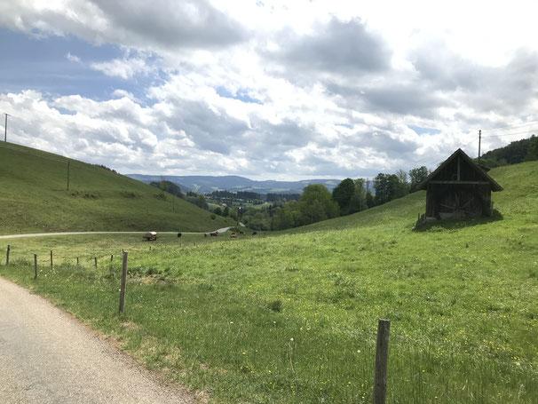 """Schwarzwaldidylle pur! Im Ortsteil """"Rohr"""" von St. Peter"""