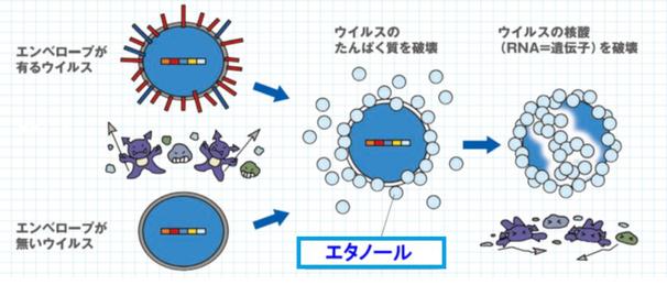 エタノール+炭酸ガス噴霧処理の作用