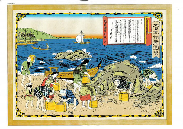 From 200 years ago we caught sea urchins at Fukui seaside.Our company Tentatsu sold Shiouni made by sea urchin.