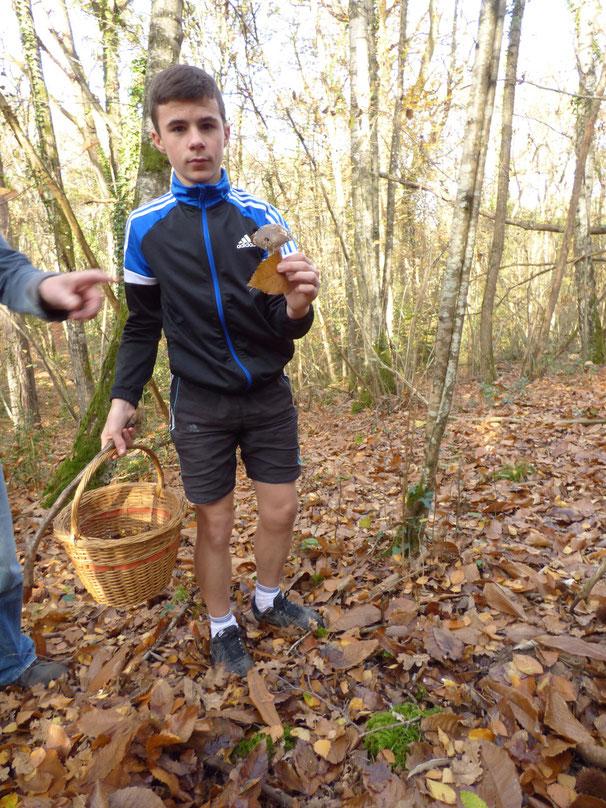 Gino qui ramasse des champignons