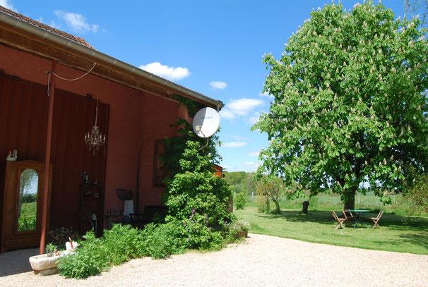 Die Kletterhortensie, Mohn und die rote Kastanie vor dem Haus