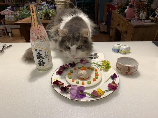 看板ネコ 鶏肉ケーキ エディブルフラワー 日本酒