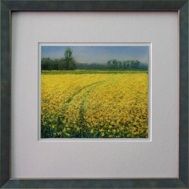 """Rapsfeld"" (Pastell), 40 cm x 40 cm"