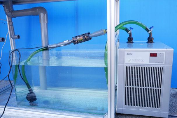 DEP-1200 HSABO 水中ポンプ 水陸両用ポンプ 水槽 オーバーフロー水槽 gex クールウェイ200