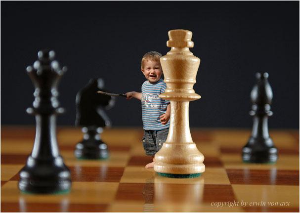 Schach, der kleine dompteur