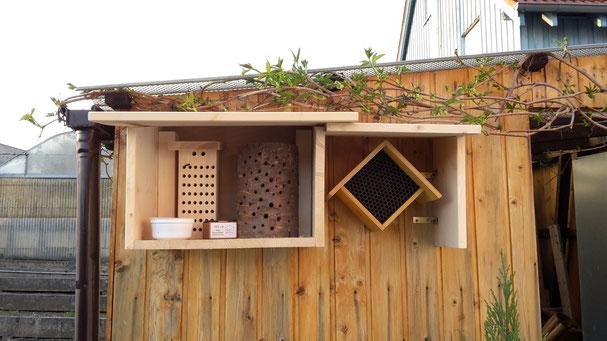 Test Bienenhotels 2018 (fertig gekaufte im Vergleich zu selbst hergestellt :)   (Foto D. Mohr)