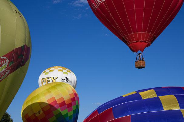 Bonn, Ballonfestival, balloon festival, Balloon, Heißluftballon, hot-air balloon, La Bonn heure,