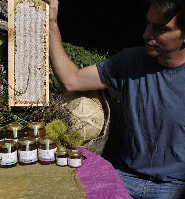 Bastien ALISE apiculteur producteur de miel des Cevennes