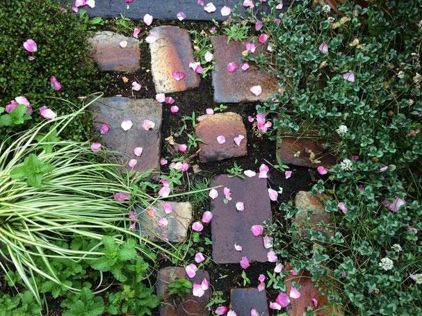 ガーデン 広島 廿日市 空間デザイン ガーデニング アニースローン