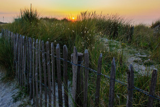 Derrière la lande, la plage de la pointe de la torche. Lieu mégalithique d'envergure en Bretagne