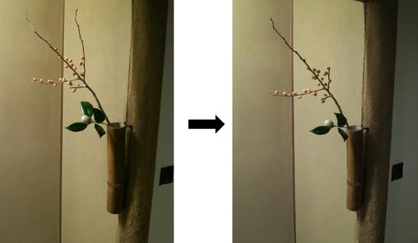 お手直し.2 椿のどの葉を落とすかが重要な例