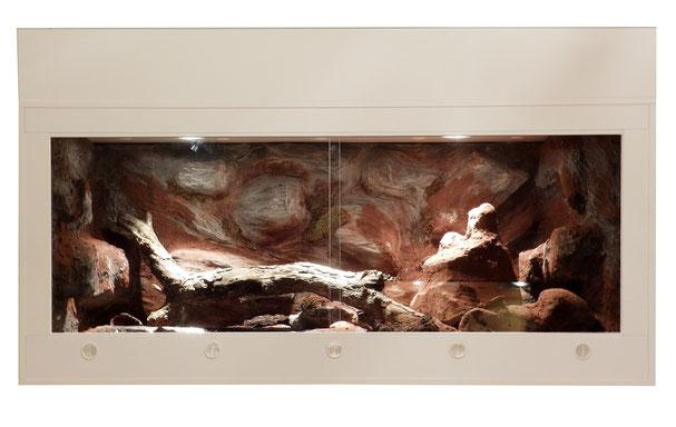 Python- Terrarium mit Wasserbecken und Termitenhügel