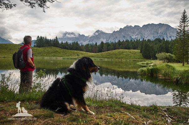 wandern mit Hund, Mittenwald, Kranzberg, Wildensee, www.mein-wanderhund.de