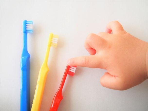 小児歯科:歯医者嫌いな子供が歯医者好きに!フッ素希望の方もどうぞ!
