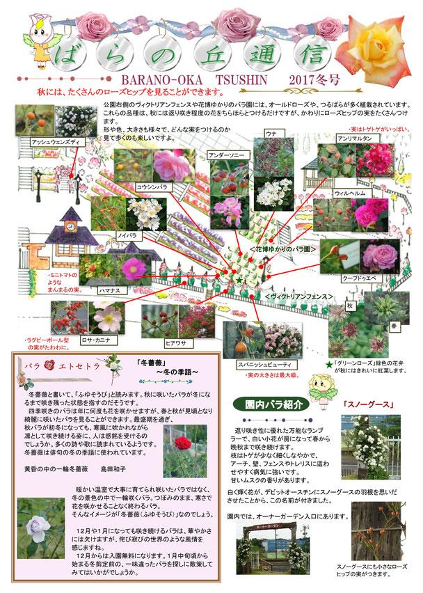 2017ばらの丘通信 冬号2面