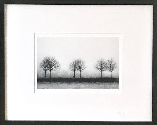 Print 20x30, frame 40x50 cm