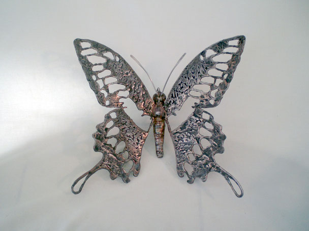 Papillon    Dimention   30x30cm       Inox