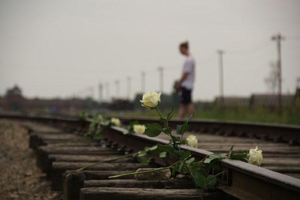 Blumen auf Bahngleise in Auschwitz