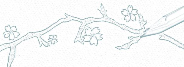 """Thème de la collection """"Hanami, Cerisiers en fleurs"""" de Nara Porcelaine"""