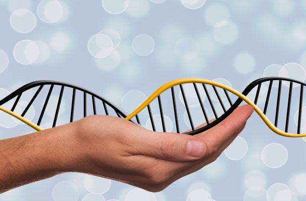 Auf einer ausgestreckten Hand liegt ein Stück DNA (Symbolbild)