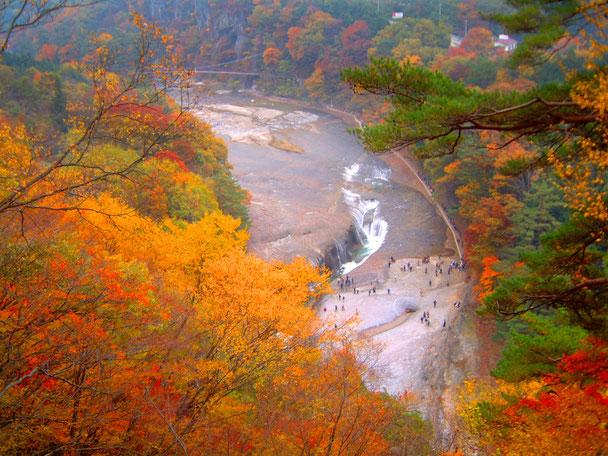 吹割の滝紅葉Gotoキャンペーン地域共通クーポン券