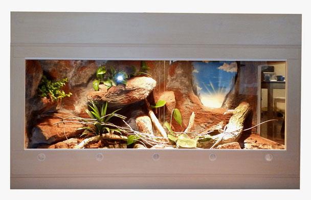 naturnahes Python- Terrarium