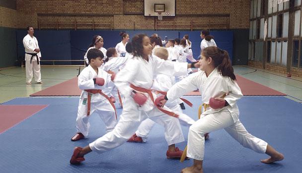 Karate für Kinder in Köln