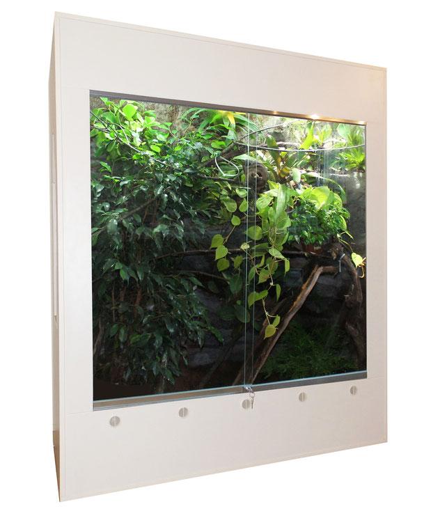 Bepflanztes Terrarium für Chamäleon