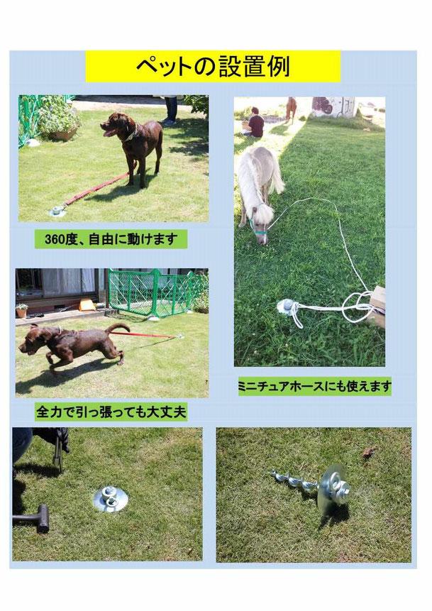 強力ペグ=フレペグ・犬用フレペグの使用例。ミニチュアホースの係留にも使用されました。