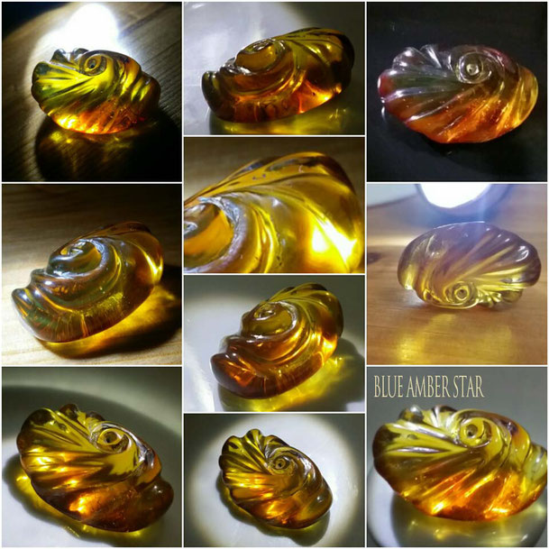 dominican amber shell sculptures