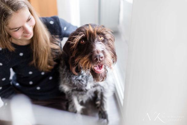 Hundefotografie, indoor, Fotoshooting, Hund, Unterfranken, Haßberge, Bamberg, Schweinfurt