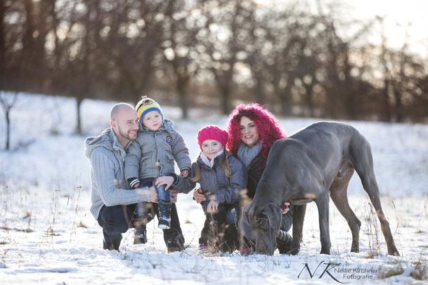 Familie, Fotoshooting, Natur, Hundefotografie, Königsberg, Bamberg, Schweinfurt, Tierfotografie