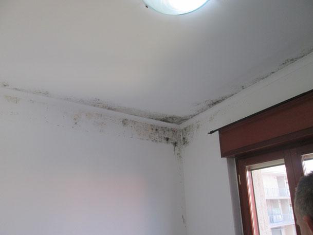 Soluzione per ambienti con condensa muffa e poni termici - Muffa sui mobili ...
